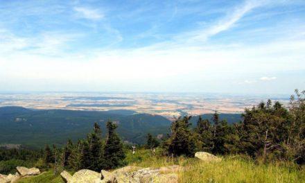 4 leuke plaatsjes bij het Harz gebergte