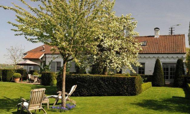 Lekker tot rust komen in bosrijk Oost-Vlaanderen